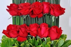 Degrau de Flores (R$180,00)